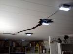 Led lights for office
