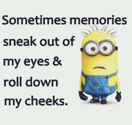 Many of these are from https://www.facebook.com/minionhumor1/?hc_ref=NEWSFEED