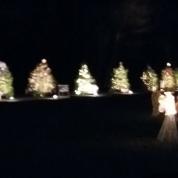 Clinton Christmas Light-up Celebration 2015 (143)