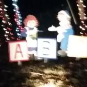 Clinton Christmas Light-up Celebration 2015 (45)