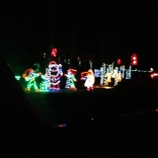 Clinton Christmas Light-up Celebration 2015 (70)